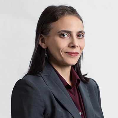 Carmen R. Parcelli